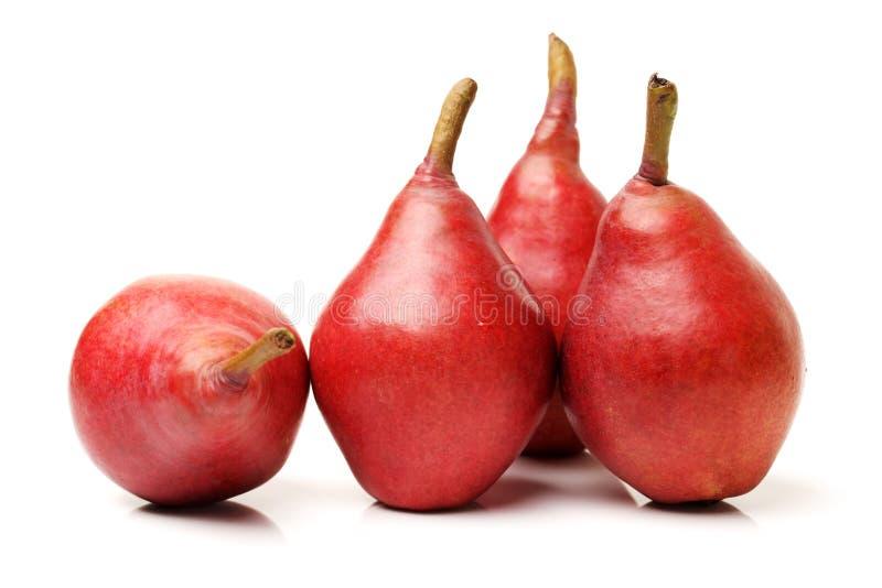 Rött päron arkivbild
