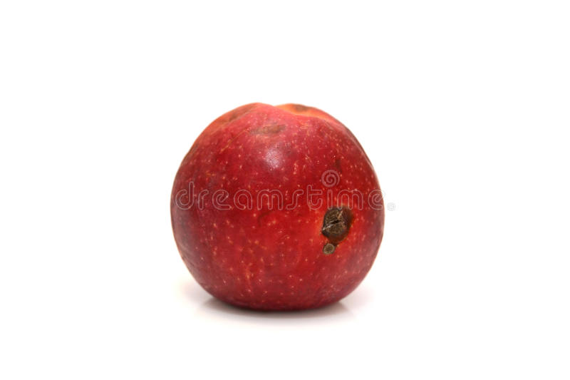 Rött ruttet äpple, naturlig färg och textur arkivbild