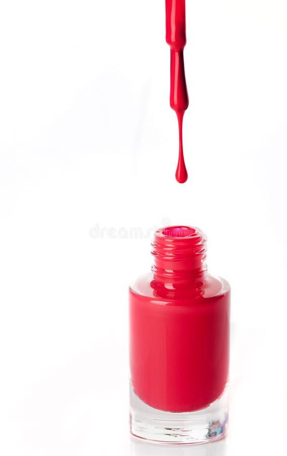 Rött spika färg royaltyfri foto