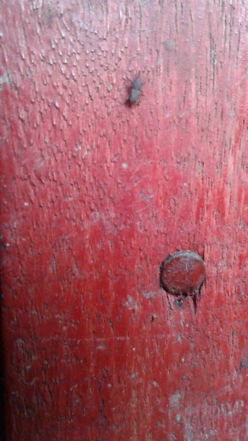 rött trä arkivbilder