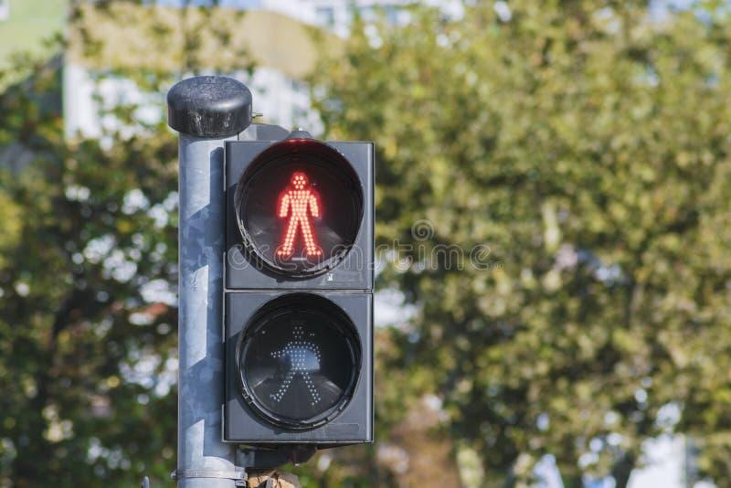 Rött trafikljus arkivfoton