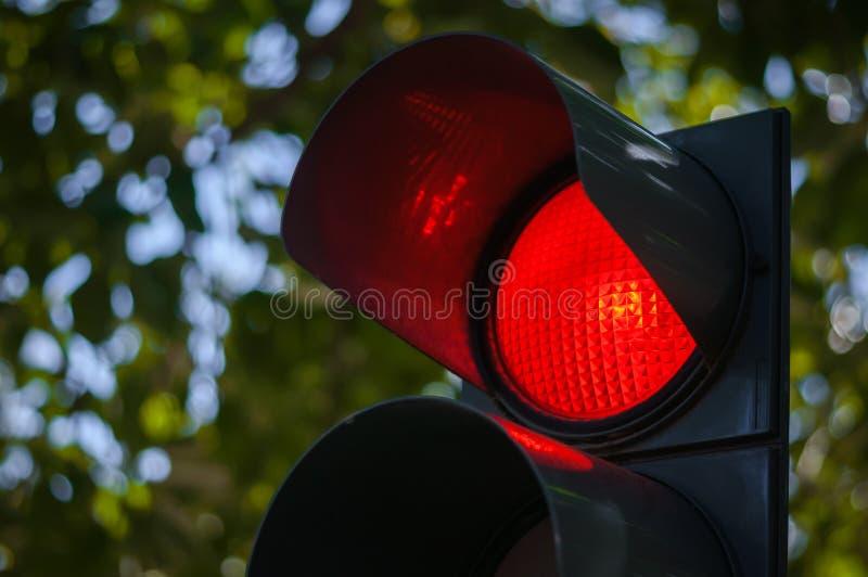 Rött trafikljus royaltyfria foton
