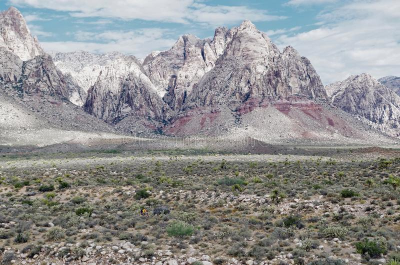 Rött vagga kanjonnationalparken, Nevada royaltyfri foto