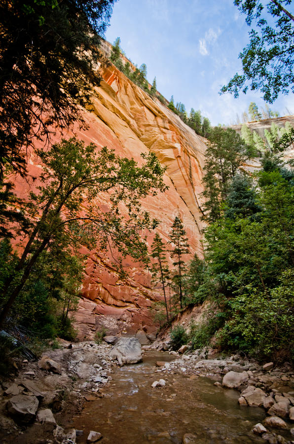 Rött vagga väggar av Zion Canyon som tas under trångt passvandringen på royaltyfri fotografi