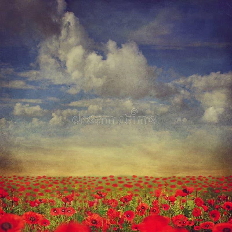 Rött vallmofält med blå himmel royaltyfri illustrationer