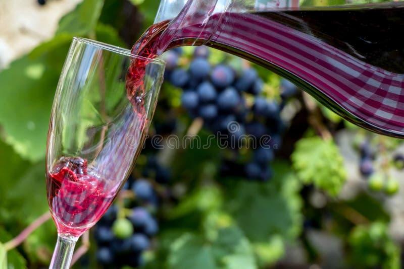 Rött vin flödar från kruset in i glasna royaltyfria foton