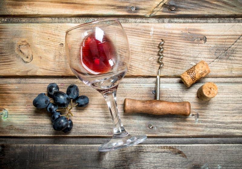 Rött vin i ett exponeringsglas med druvor och en korkskruv royaltyfri bild