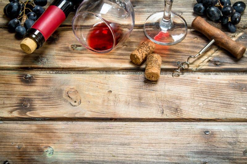 Rött vin i ett exponeringsglas med druvor och en korkskruv arkivbild