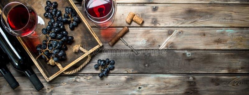 Rött vin i ett exponeringsglas med druvor och en korkskruv royaltyfri foto