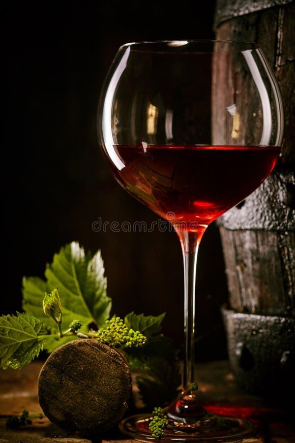 Rött vin i ett exponeringsglas med vinrankasidor och kork royaltyfria bilder
