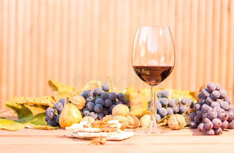 Rött vin i ett exponeringsglas och en höstfrunch arkivfoton