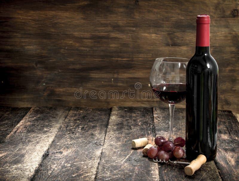 Rött vin med en filial av druvor och en korkskruv royaltyfri foto