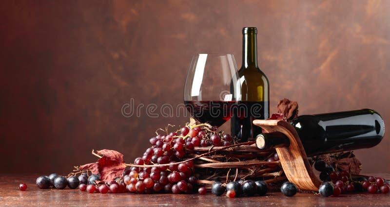 Rött vin och nya druvor med torkat upp vinrankasidor fotografering för bildbyråer