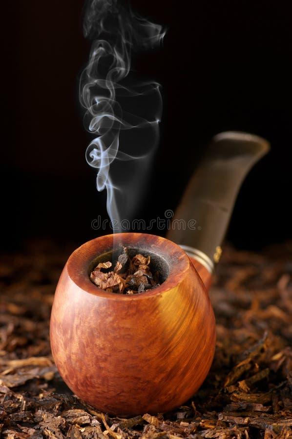 Rør och tobak fotografering för bildbyråer