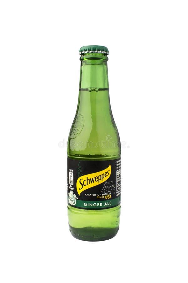 Rússia, Novosibirsk - 7 de dezembro de 2017 - Schweppes Ginger Ale É um refresco carbonatado imagem de stock