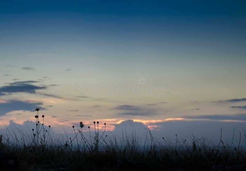 Rússia Por do sol do verão na natureza Por do sol fantástico sobre um lago perto de um prado verde fotografia de stock royalty free