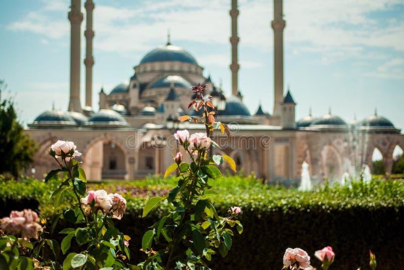Rússia República chechena Cidade de Grozny 1º de setembro de 2017 imagem de stock royalty free