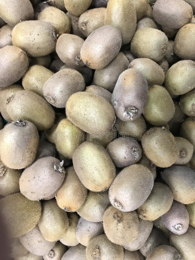 Rússia St Petersburg O quivi é o nome do fruto de variedades de planta cultivada do gênero Actinidia imagens de stock