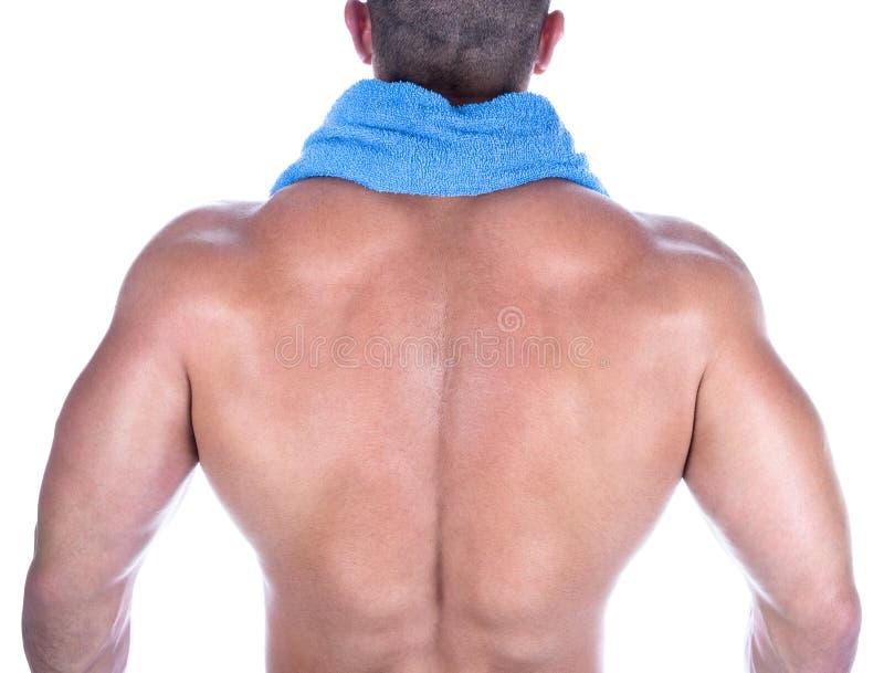 Rückseitige Ansicht eines Bodybuilders lizenzfreie stockfotos