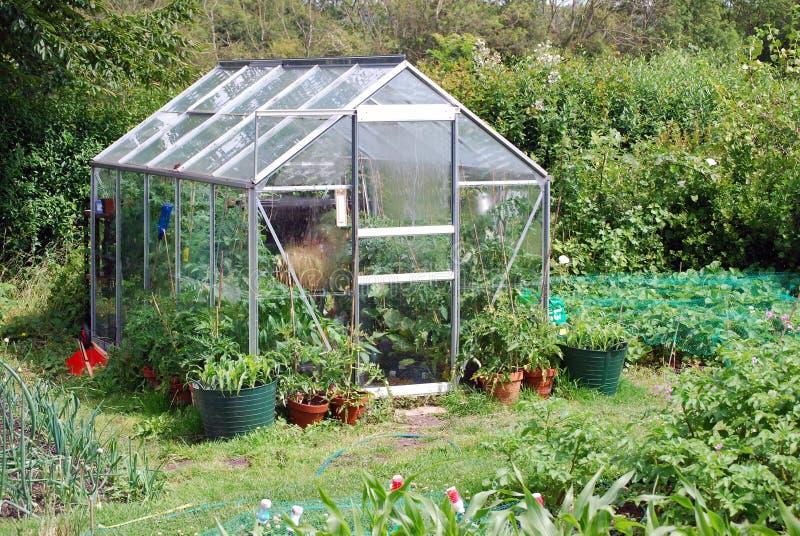 Rückseitiger Garten lizenzfreies stockbild