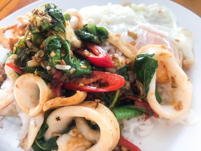 Rühren Sie gebratenen Kalmarbasilikum und thailändischen Reis lizenzfreie stockfotos