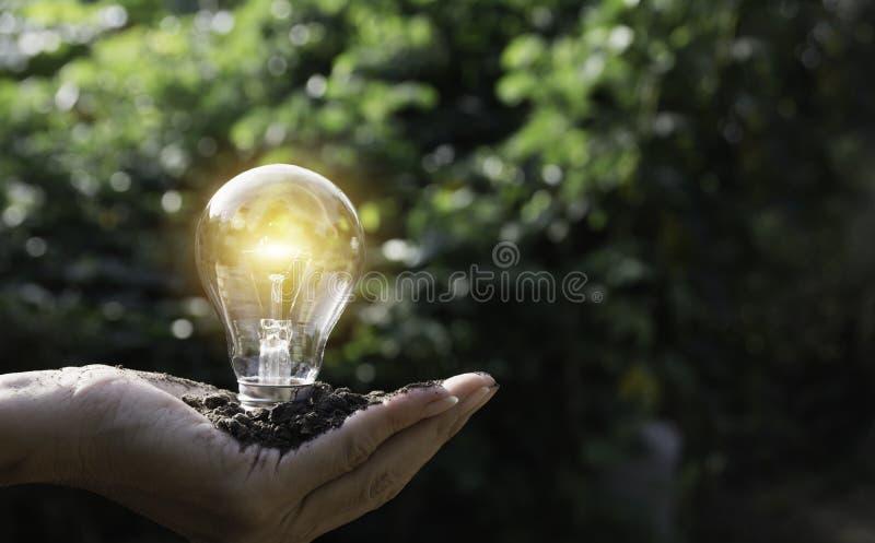 ręce gospodarstwa światła żarówki oszczędność energii światła żarówki Innowacja i kreatywnie pojęcie zdjęcia royalty free