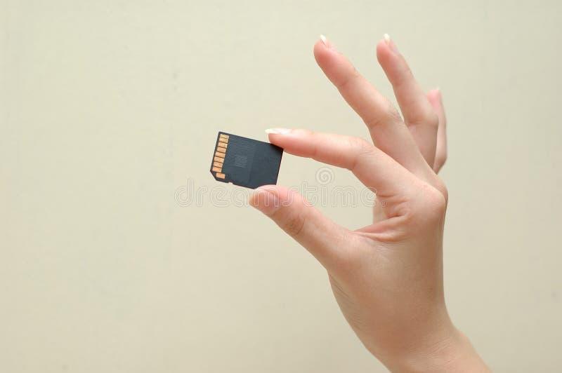 ręce karty pamięci kobieta zdjęcie royalty free