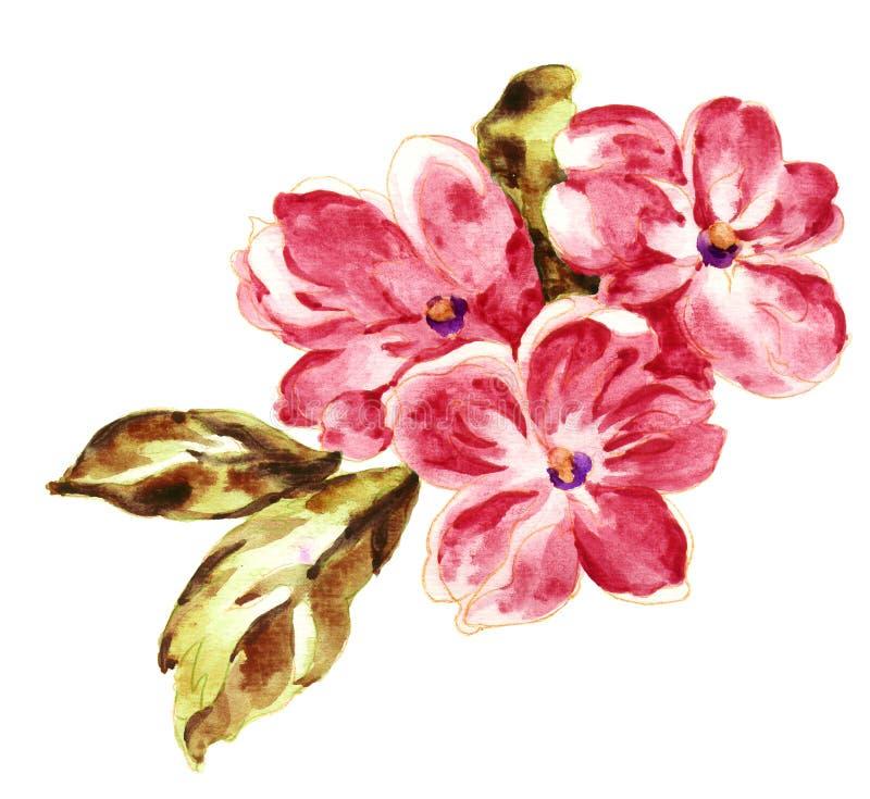 Ręcznie malowany akwarela kwiatu materiał, piękny embossed wzór, europejczyk tekstury deseniowy podcieniowanie obraz stock