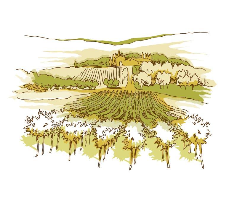 Ręcznie robiony nakreślenia winogrona pola i winnicy royalty ilustracja