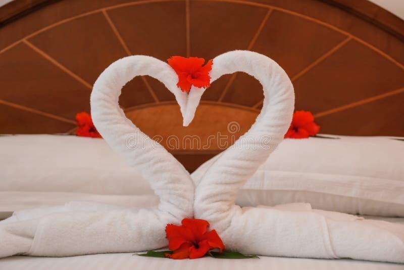 Ręcznikowi łabędź i kwiaty na łóżku obrazy stock