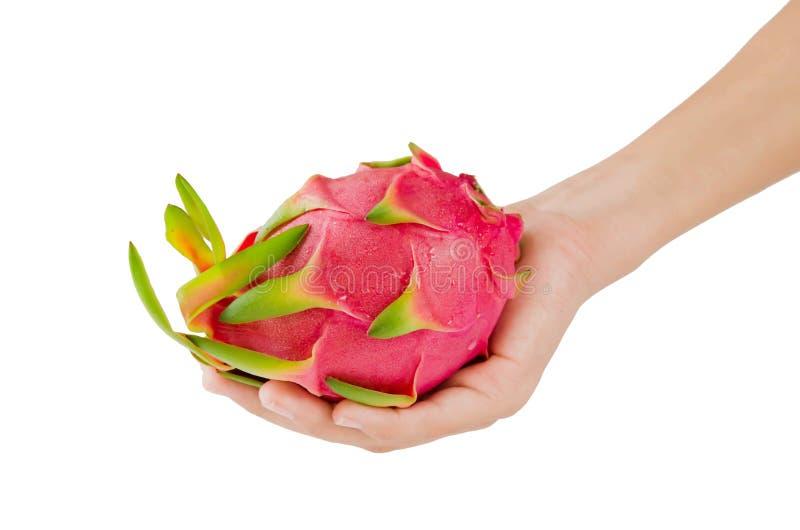 Ręk i smoka owoc fotografia stock