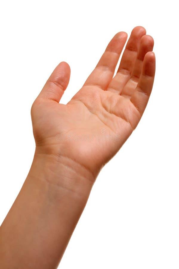 ręka zdjęcia stock