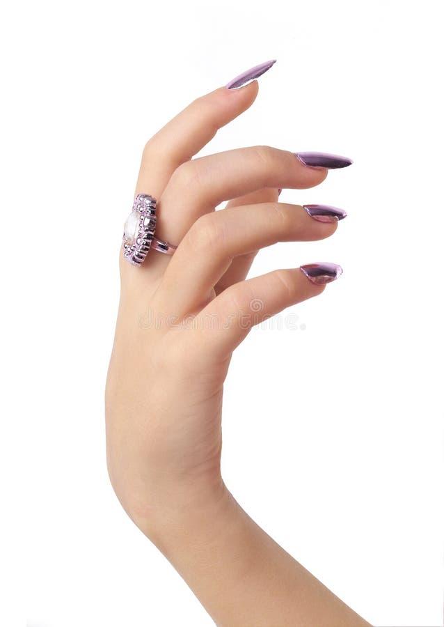 ręka. zdjęcie stock
