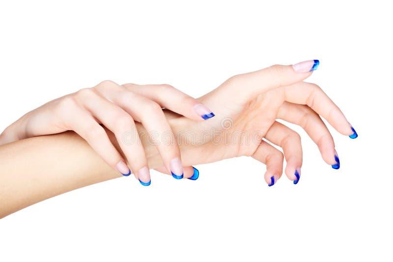 ręka błękitny francuski manicure fotografia stock