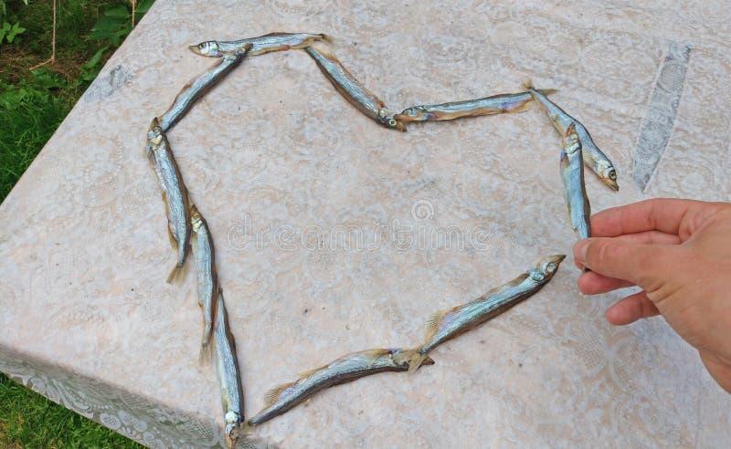 Ręka bierze ryby Serce jedzenie Serce gromadnik ryba C zdjęcia royalty free