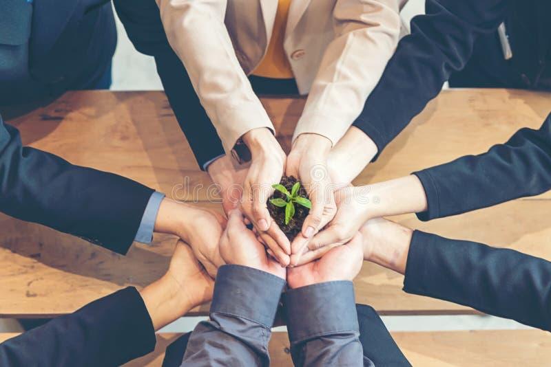 Ręka biznesu drużyny praca Cupping młodej rośliny Pielęgnuje Środowiskowego i zmniejsza globalnego nagrzania ziemię obrazy royalty free