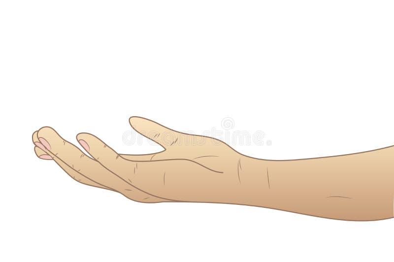 Ręka dawać palma up ilustracja wektor