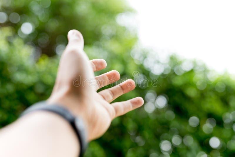 Ręka dosięga out nad zielonym naturalnym światłem obraz stock