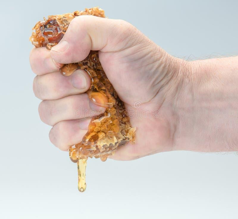 Ręka gniesie miód od honeycombs obraz stock