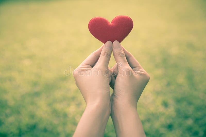 Ręka i serce zdjęcie royalty free