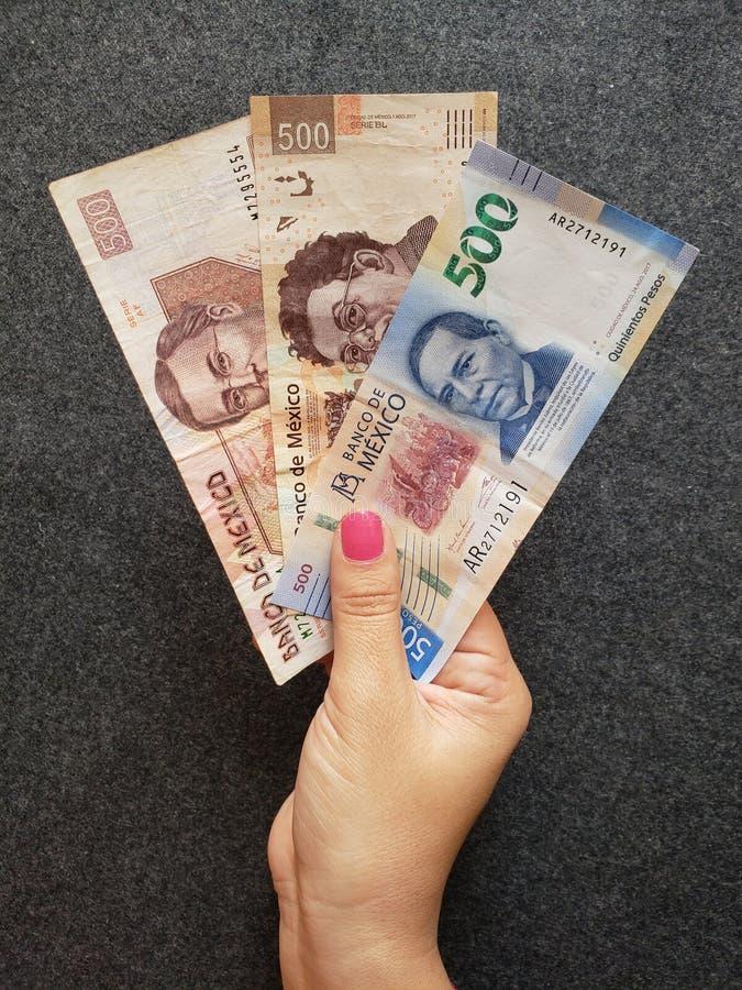 ręka kobiety mienia meksykańscy banknoty 500 peso zdjęcia royalty free