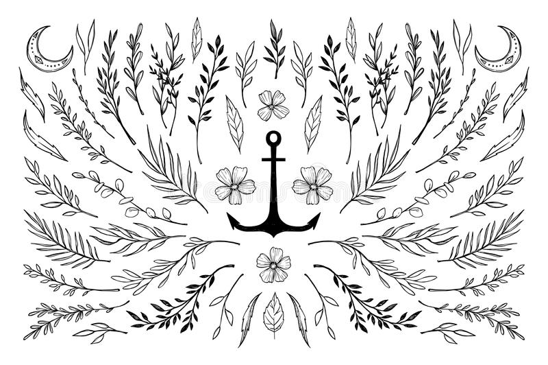Ręka kreślił wektorowych roczników elementy royalty ilustracja