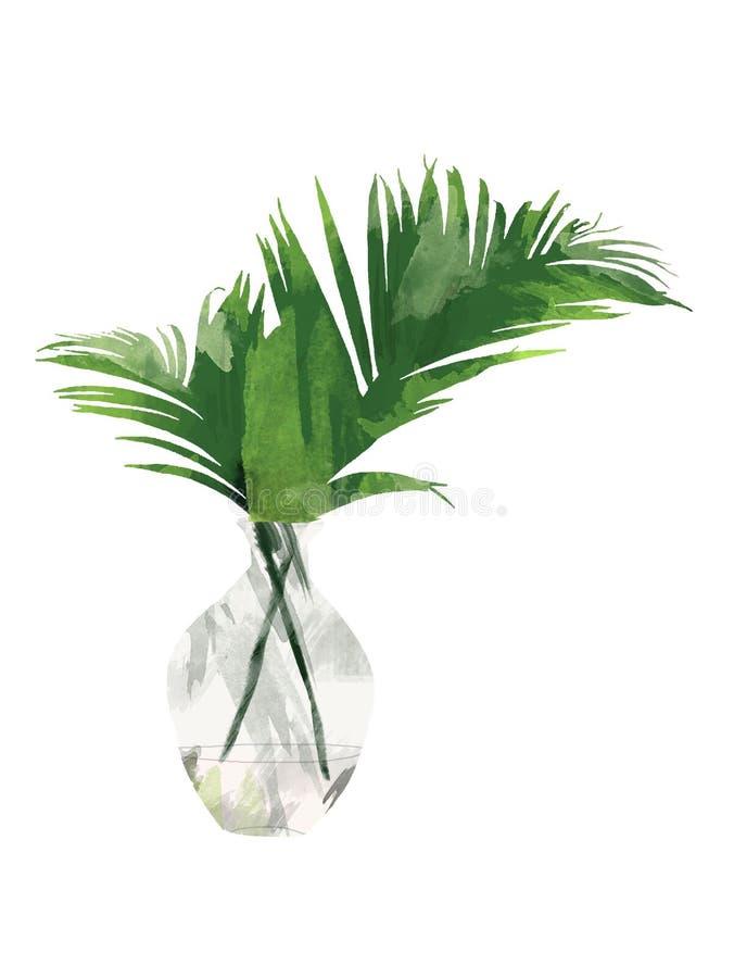 Ręka malował tropikalnej areki palmowego liść w butelce odizolowywających na białym tle wazie lub Kwiecista botaniczna klamerki s royalty ilustracja