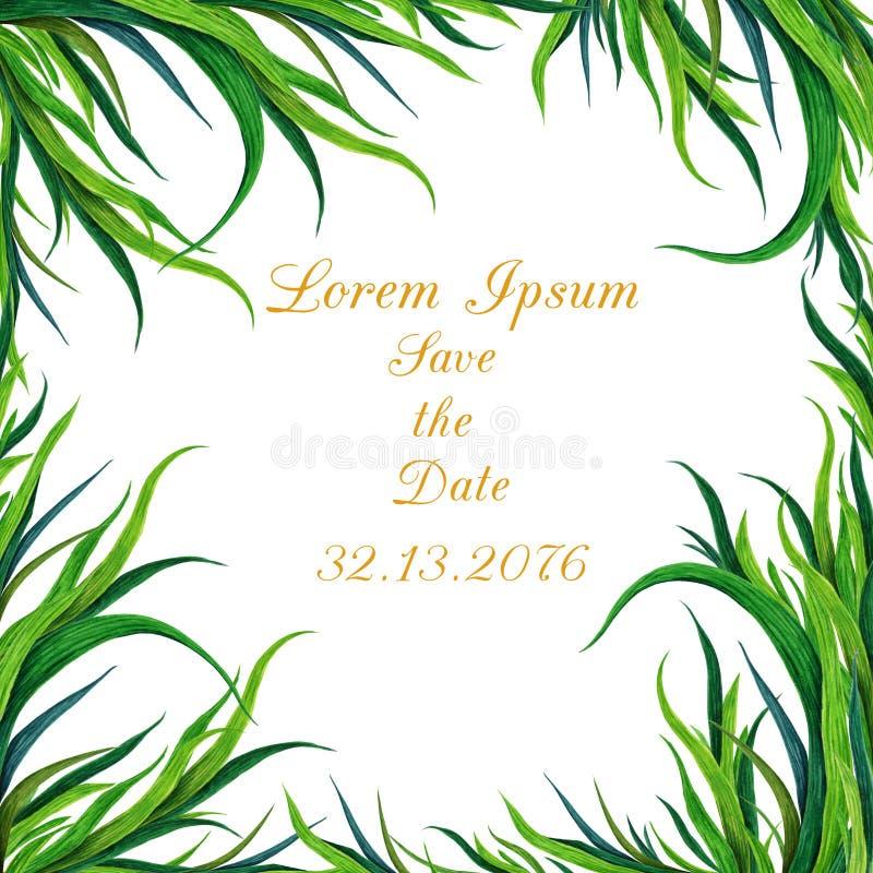 Ręka malująca akwareli zielonej trawy rama Może używać jako dekoracyjny element dla powitanie karty, ślubny zaproszenie ilustracji