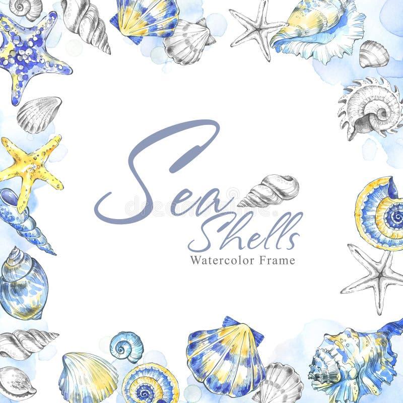 Ręka malująca seashells kwadrata rama Akwareli lata dekoracyjny tło Oryginalna ręka rysująca ilustracja żeglarz ilustracja wektor