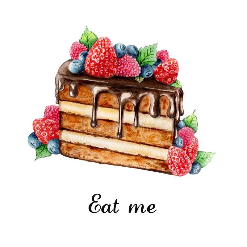 Ręka malujący czekoladowy tort z lato jagodami royalty ilustracja