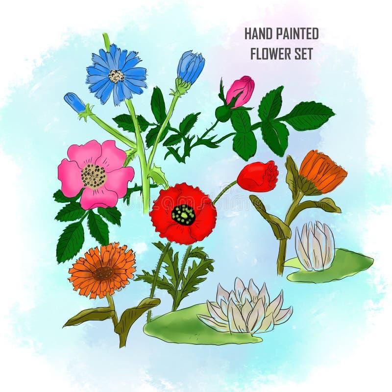 Ręka malujący ustalony kwiat na akwareli tle royalty ilustracja