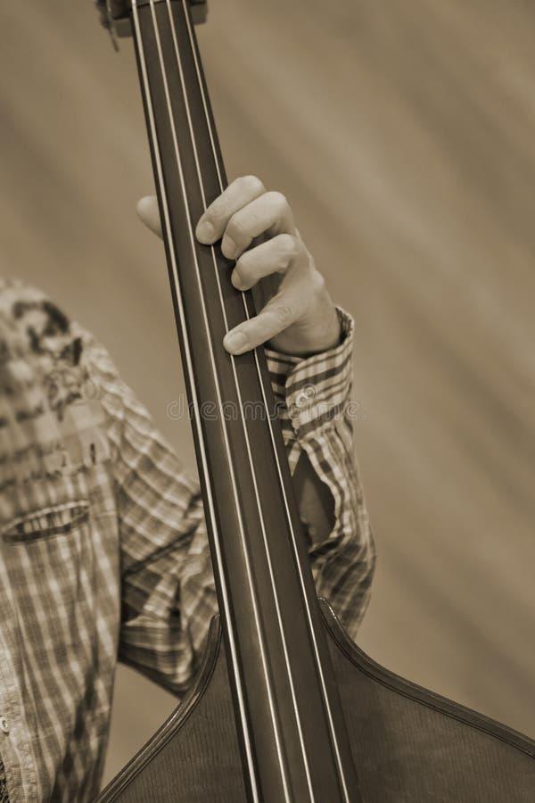 Ręka muzyk bawić się dwoistego bas fotografia stock