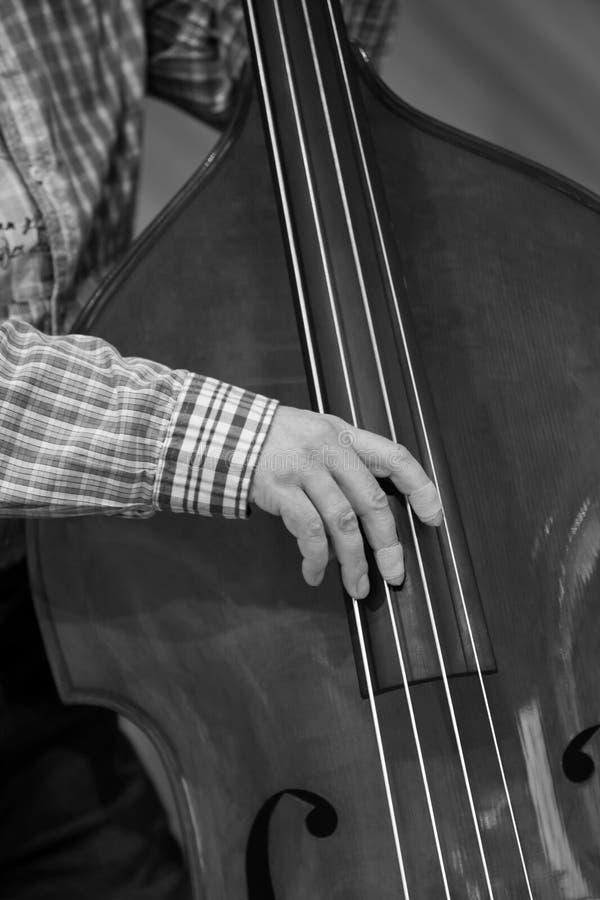 Ręka muzyk bawić się dwoistego bas zdjęcie stock