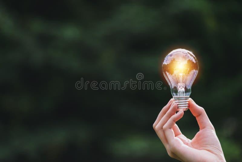 Ręka osoby mienia żarówka na natury tle dla słonecznego, energetycznym, pomysłu pojęcie fotografia stock